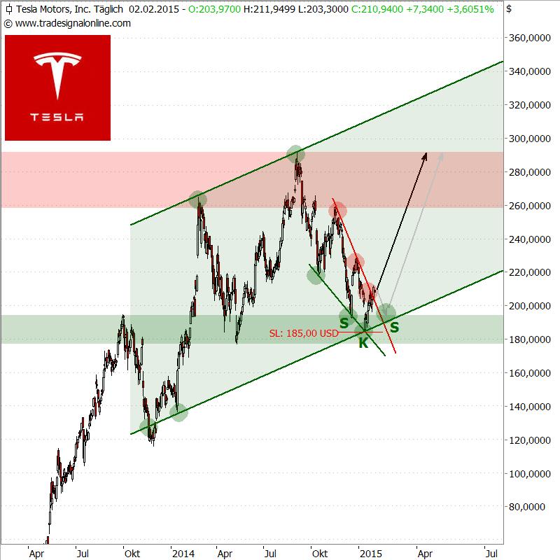 Tesla-d_030215